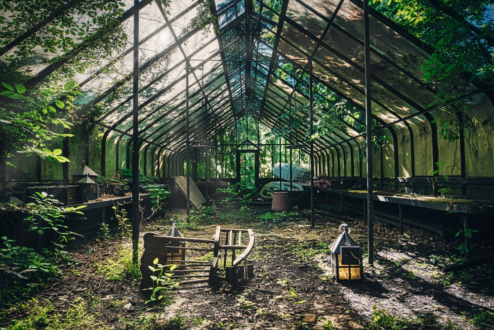 empty green house