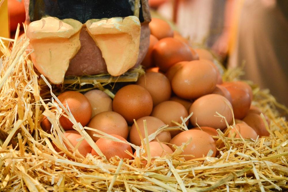 bunch of brown eggs