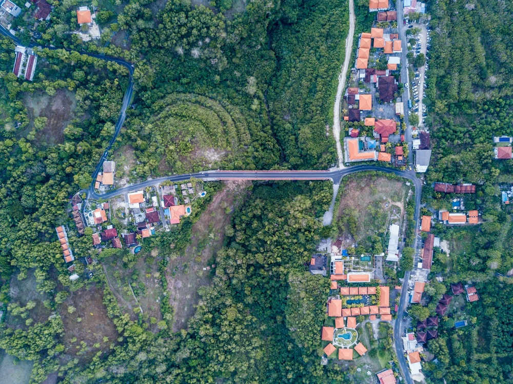 aerial photography of houses viewing road and forest during daytime