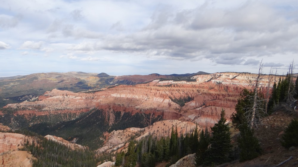 brown and green canyon