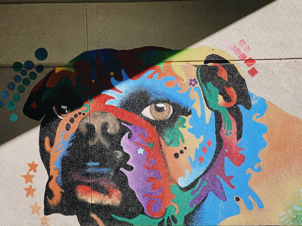 multicolored painting of dog