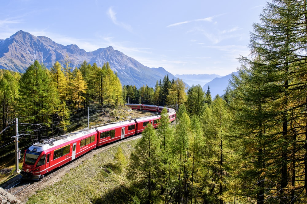 red and white train near trees during daytime