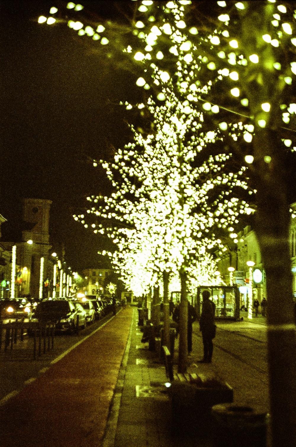 turned-on lights on tree