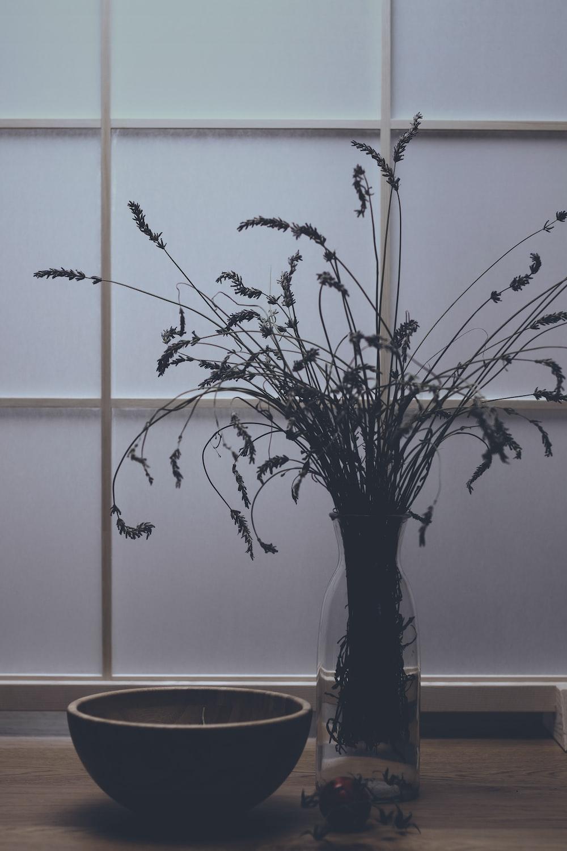 minimalist photography of flower arrangement beside a bowl