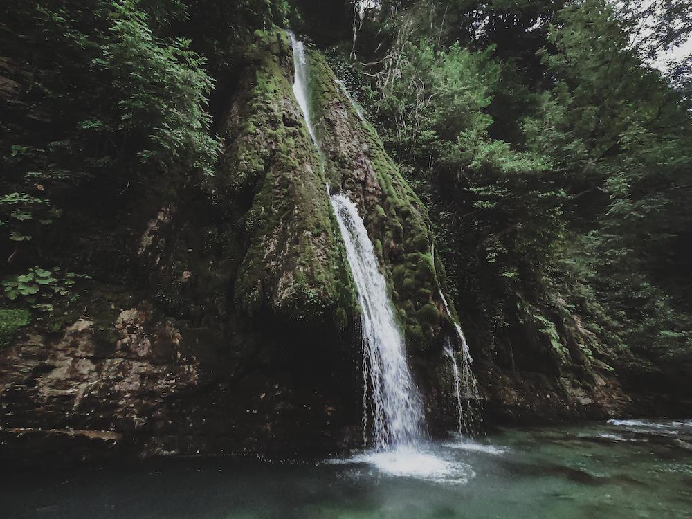 flowing waterfalls near green trees