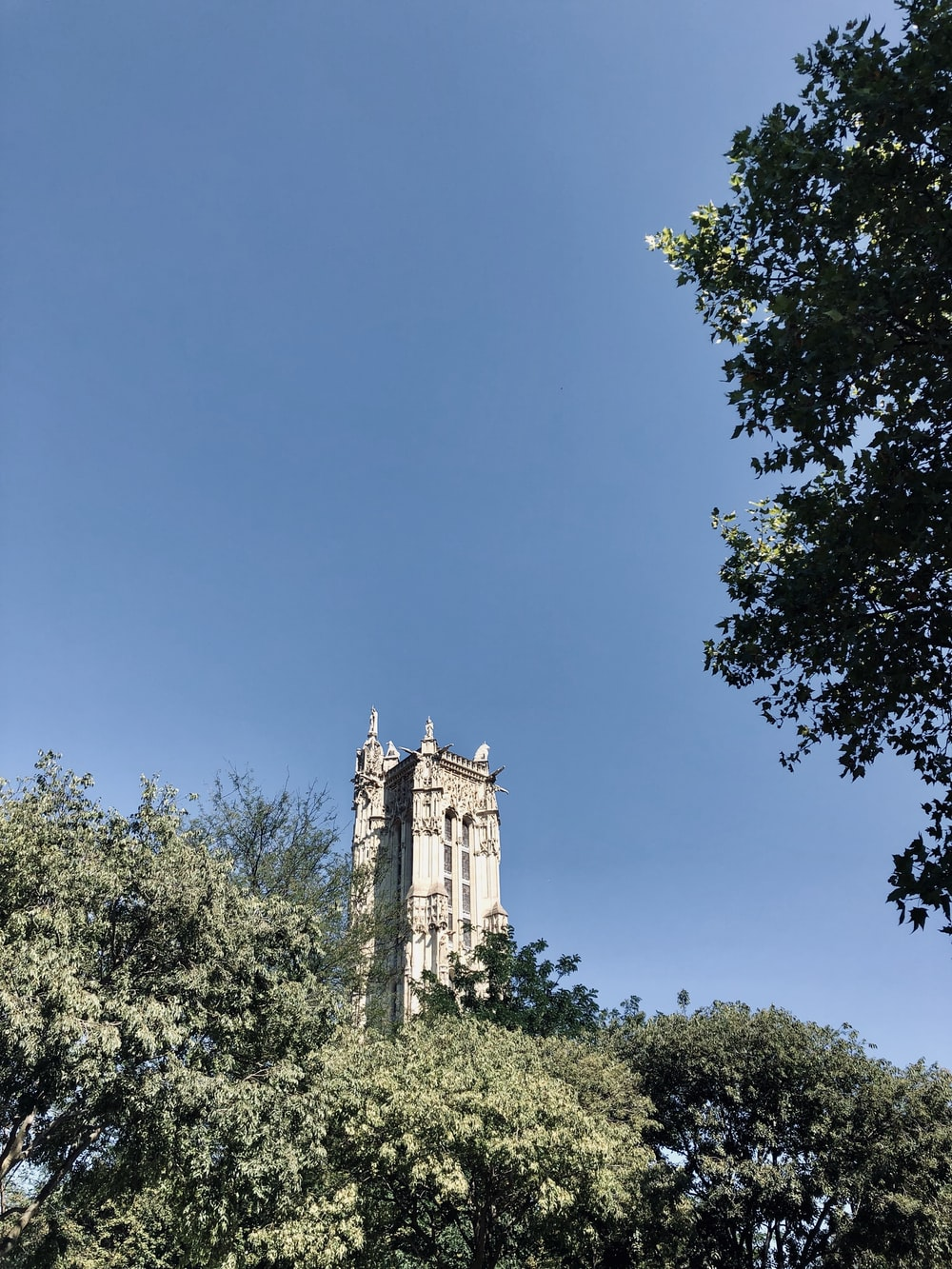 gray concrete tower beside green trees