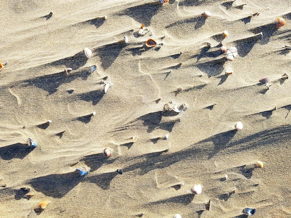 grey sand during daytime
