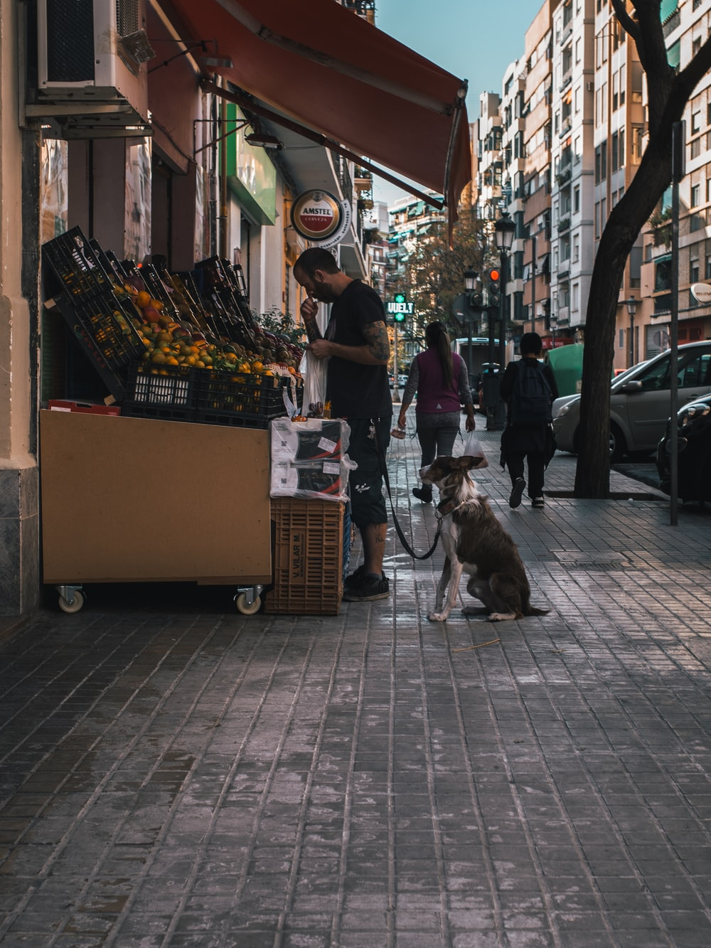 man and a dog at a kiosk