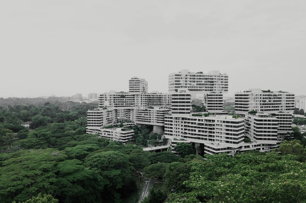 white cement buildings surrounded by a forest