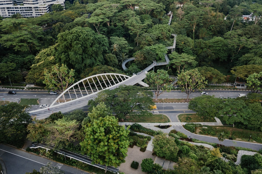 aerial photography of white bridge