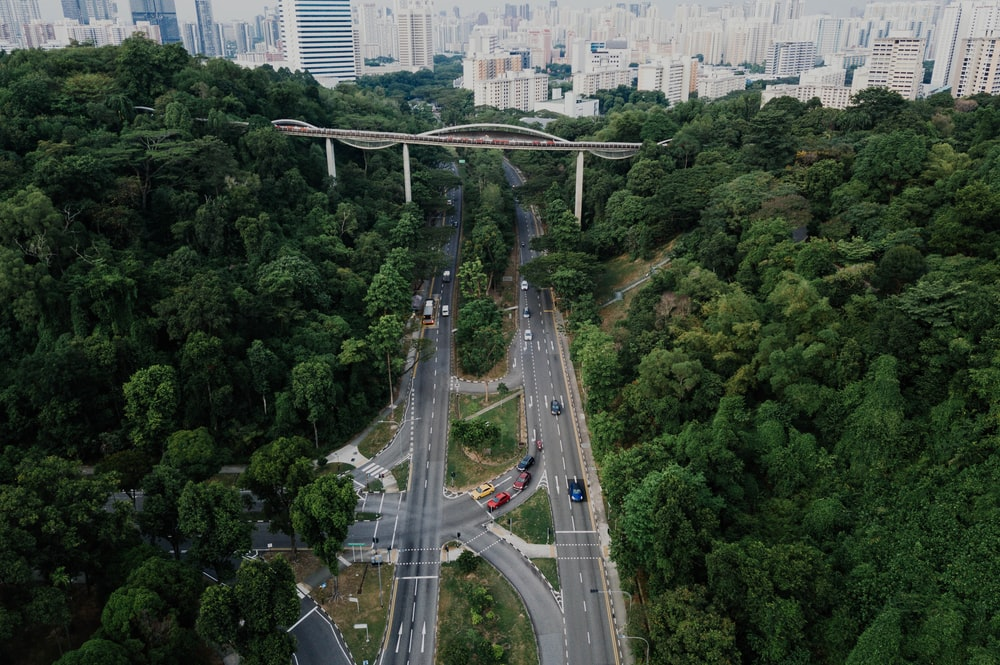 bird's eye view of two roads and a bridge