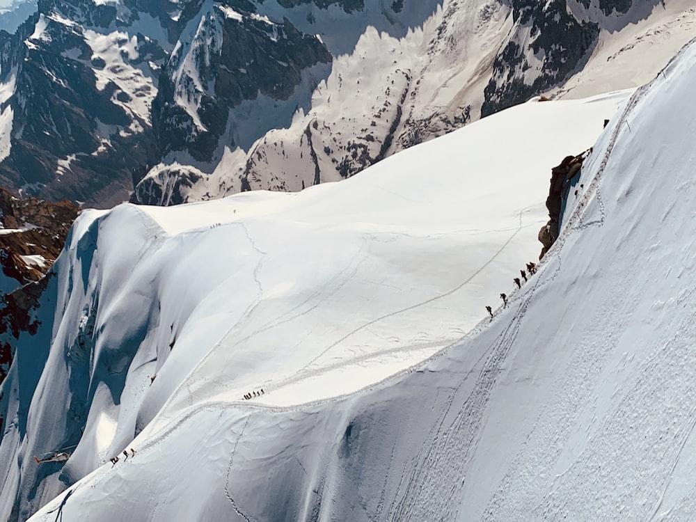 people trekking a snowy mountain