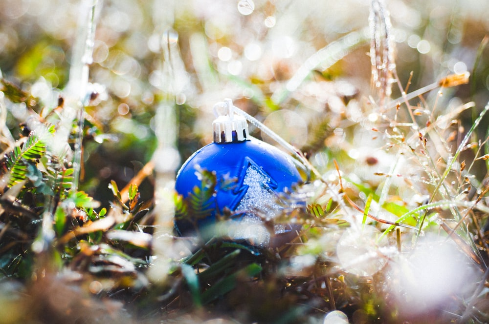 selective focus photography of blue bauble on green grass