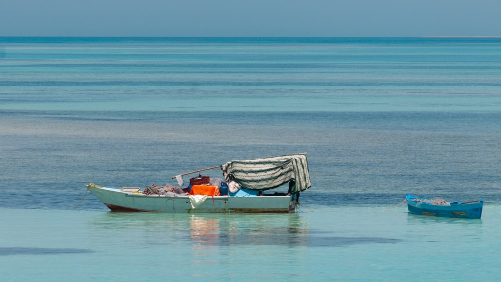 gray boat sailing during daytime