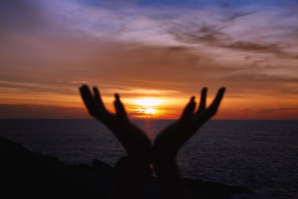silhouette photography of person's hands during golden hour