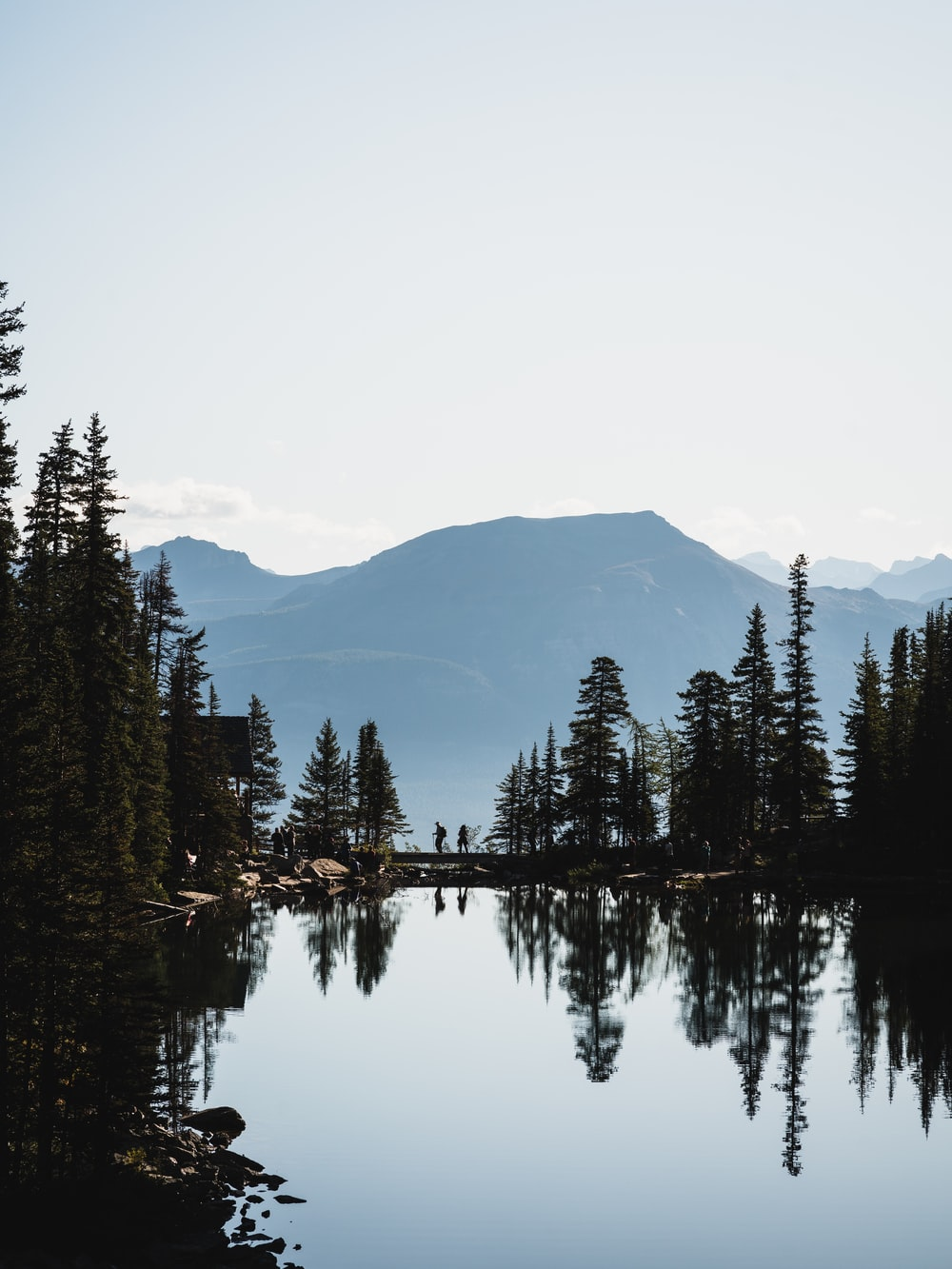 body of water surrounded by trees under white sky