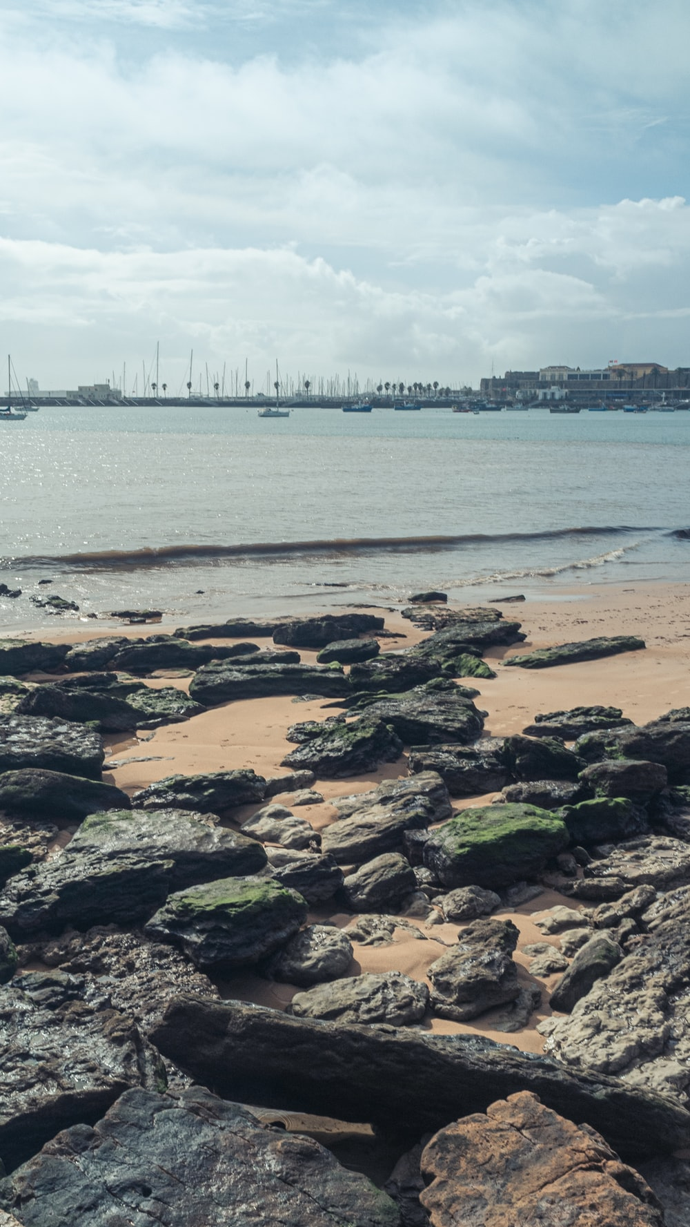 rocks on the seashore during daytime