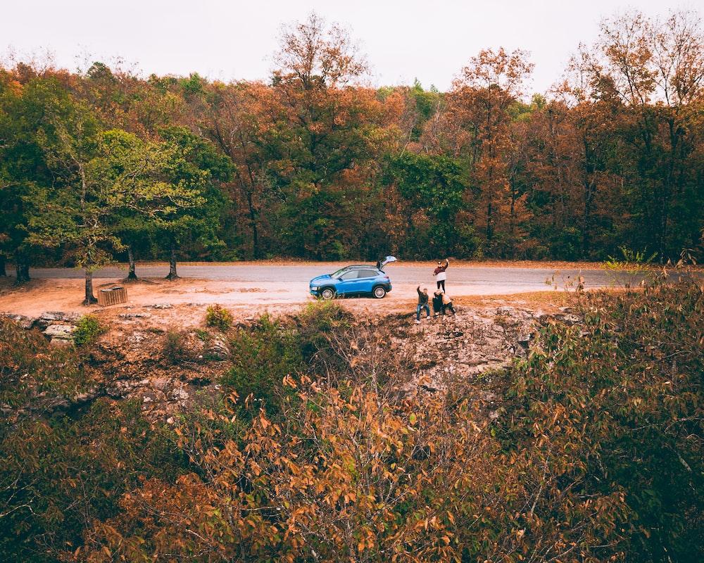 blue hatchback on road between trees