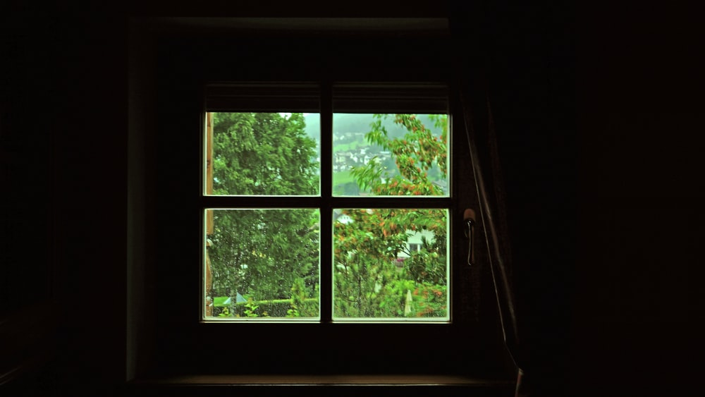 photo of brown wooden glass panel window frames