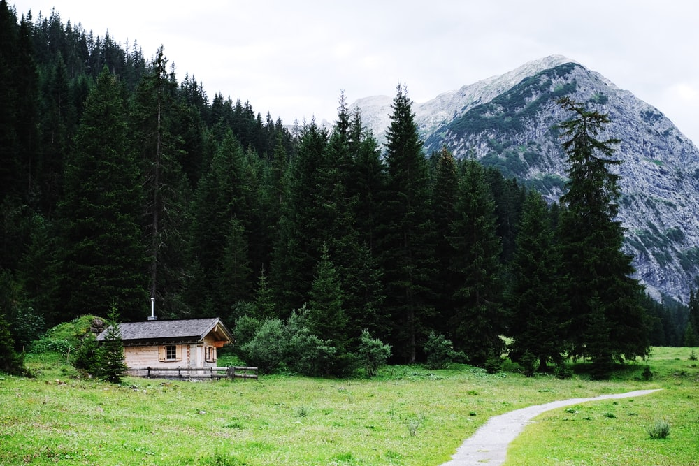 brown cabin near green trees and mountain