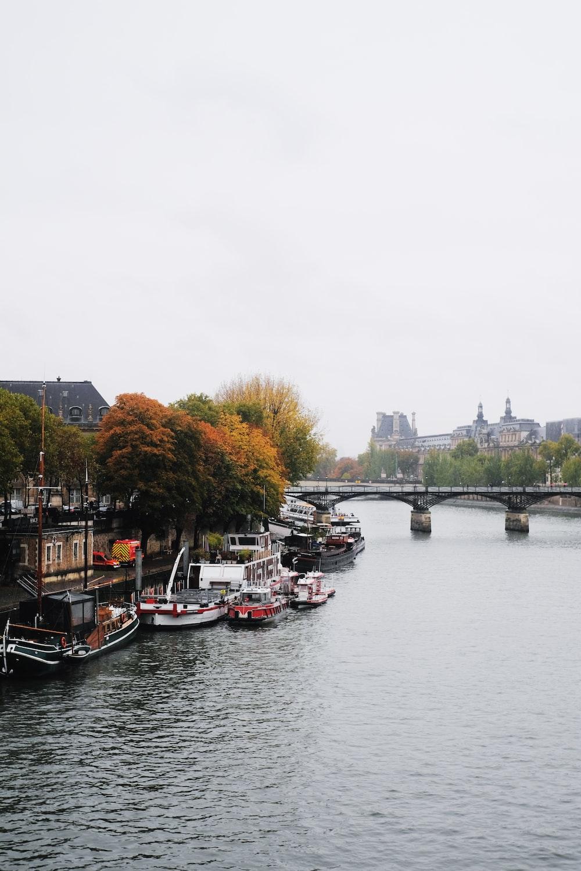 boats near gray concrete bridge during daytime