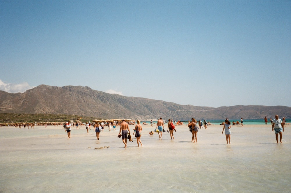 people on seashore during daytime