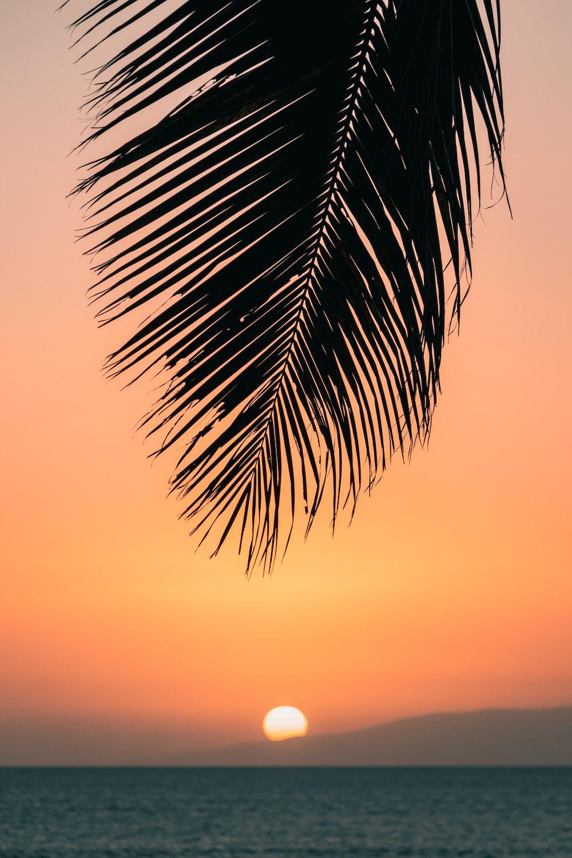 calm ocean at sunset