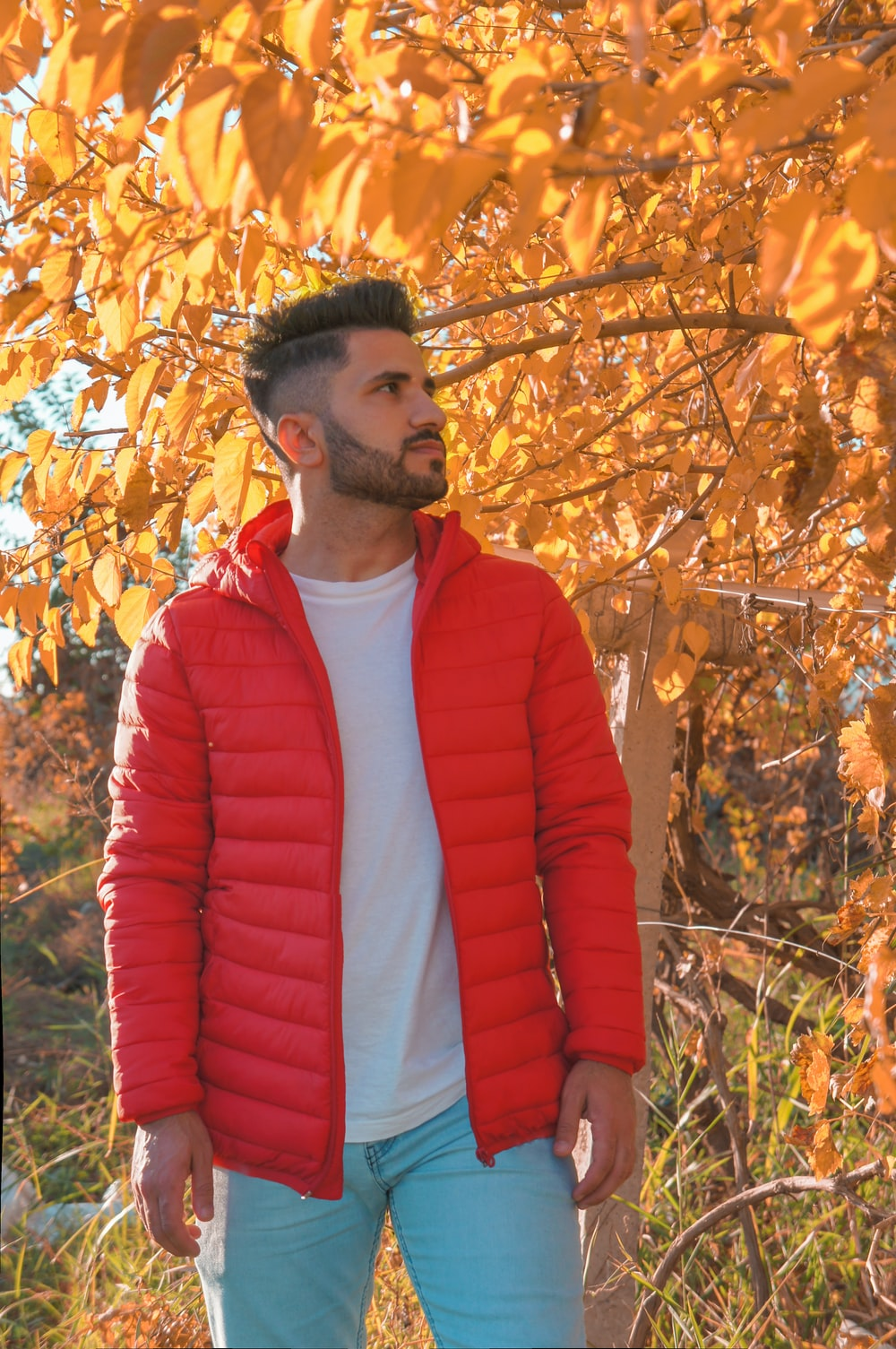 man wearing red zip-up bubble jacket under brown leaf tree