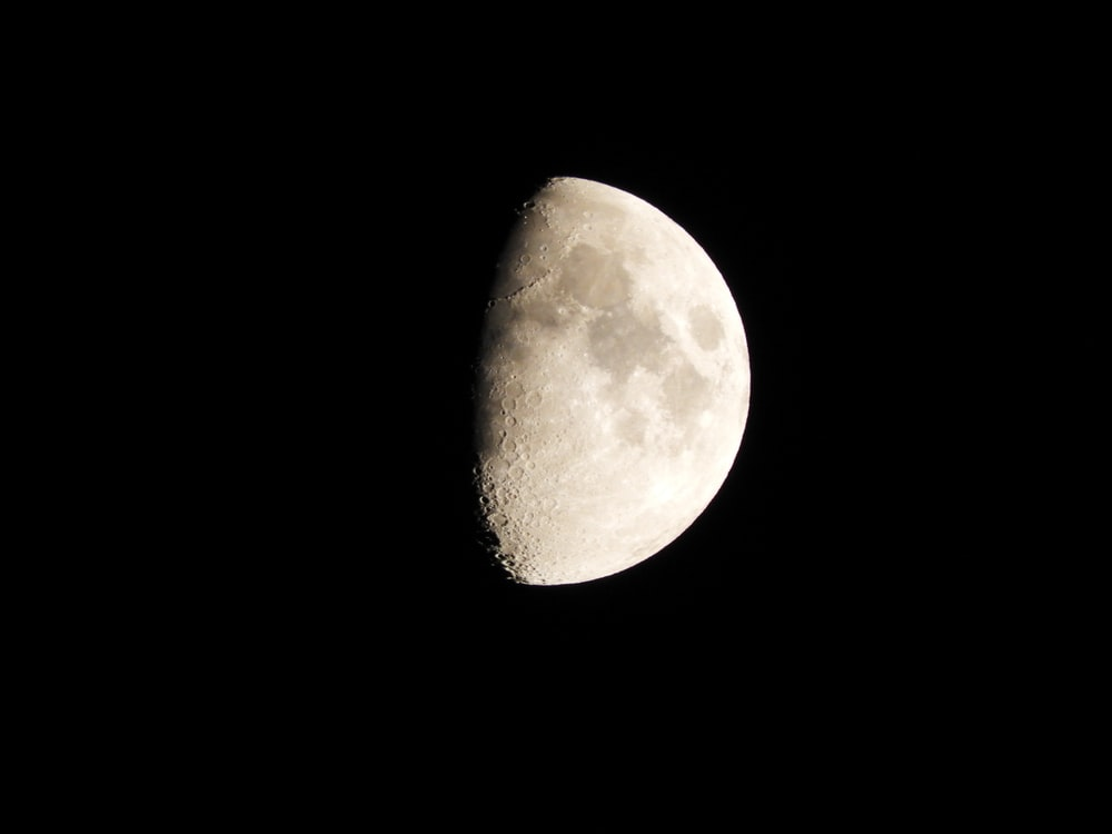 Earth's moon at night