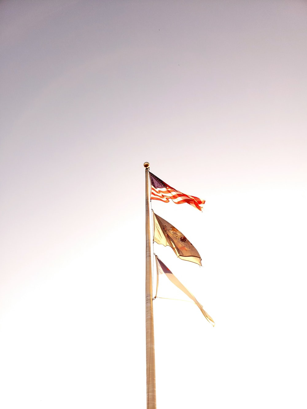 low angle photo of flags