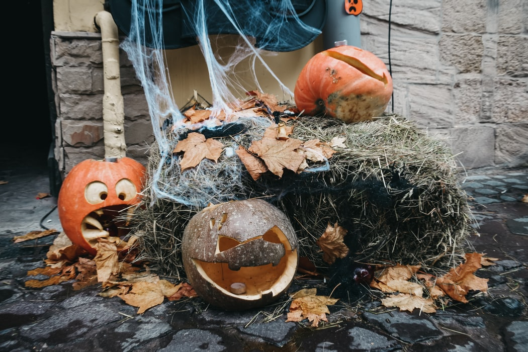 Ninety-nine percent of pumpkins sold in the United States are for the sole purpose of decoration