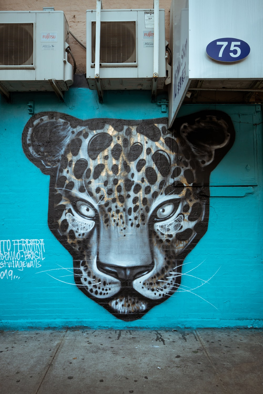 leopard graffiti