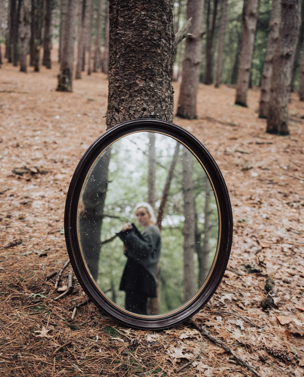 oval mirror in forest