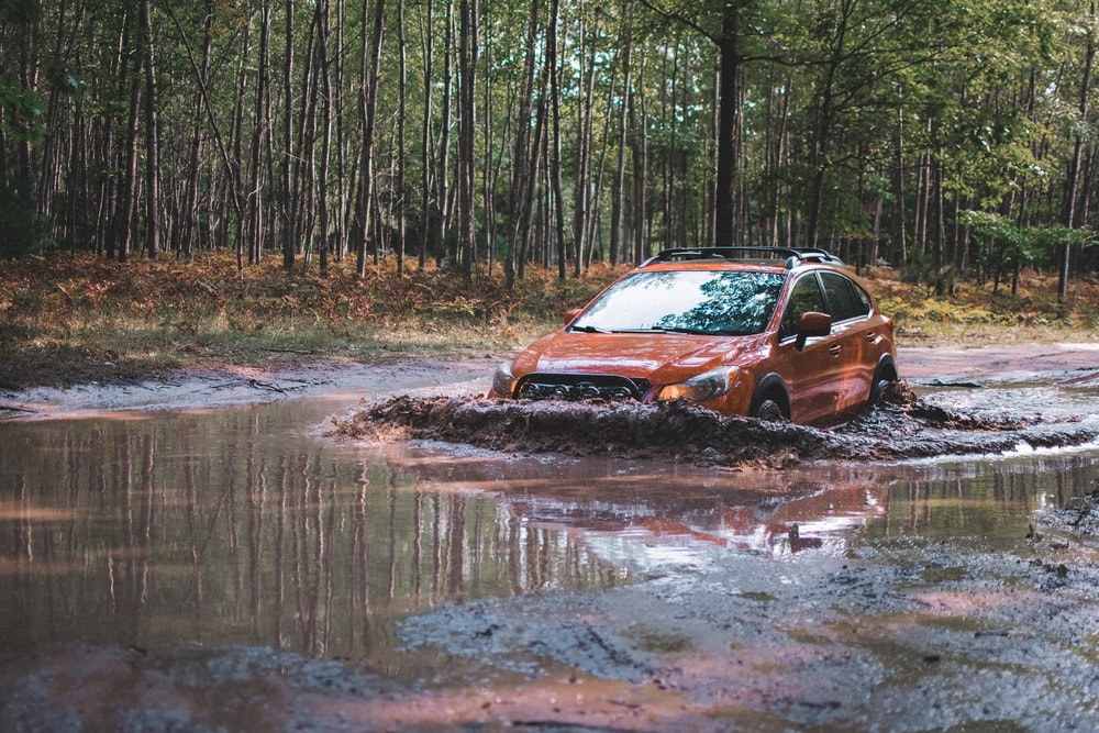 orange SUV passing through muddy lake surrounded with tall and green trees during daytime