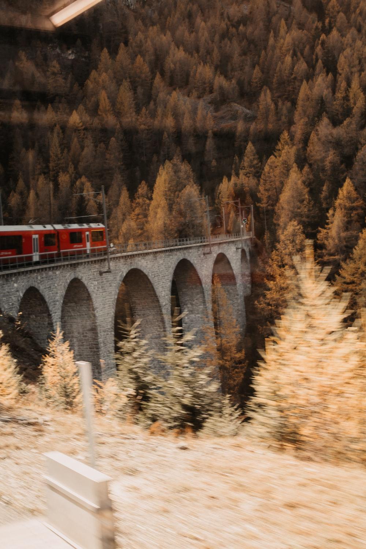 red train on gray stone bridge