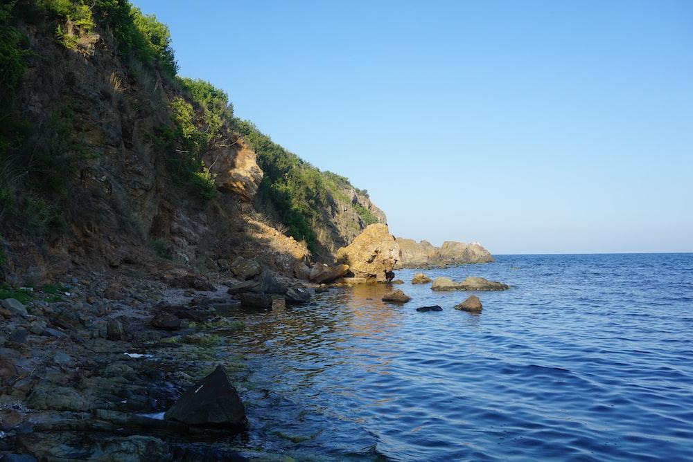 brown seashore rocks with green vegetation during daytime