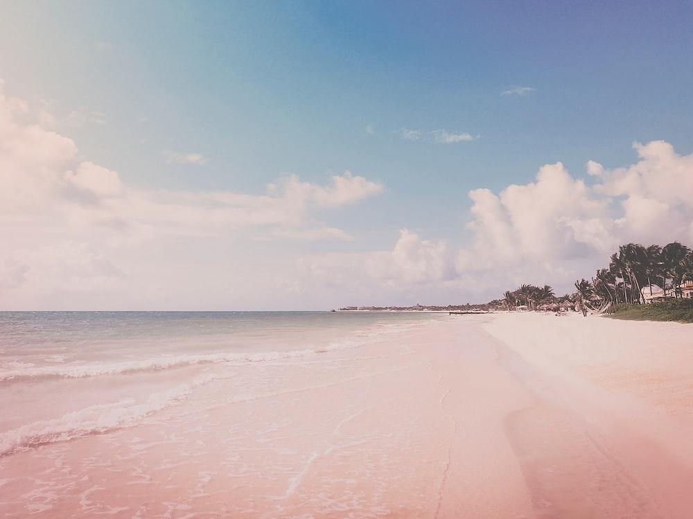 landscape photography of beach coast