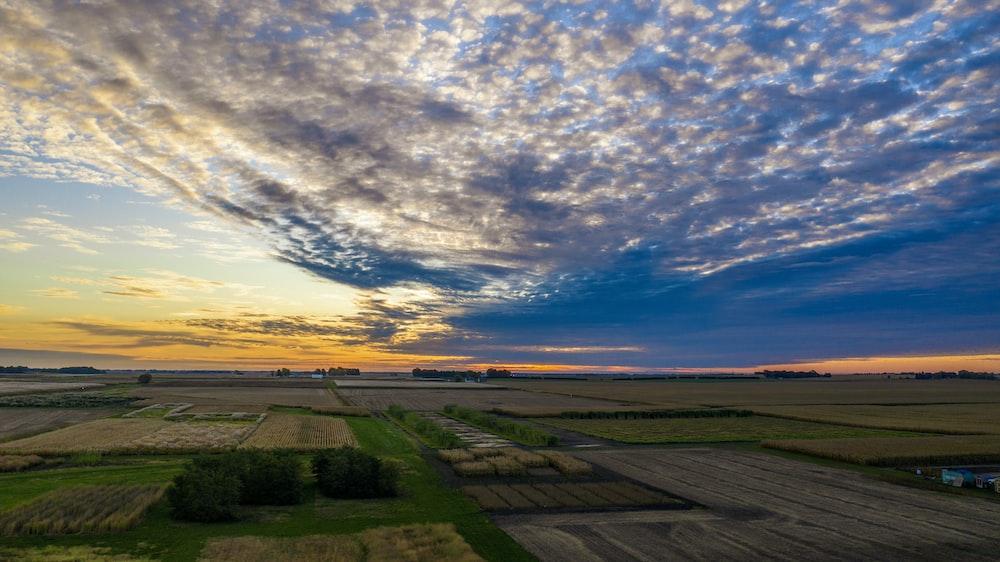 green grass field and sunset