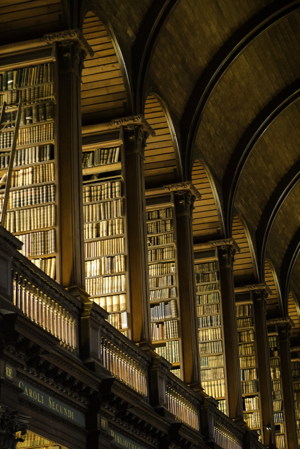 photo of bookshelf library