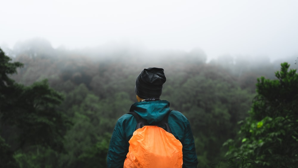 selective focus photography of person standing on cliff looking at forest