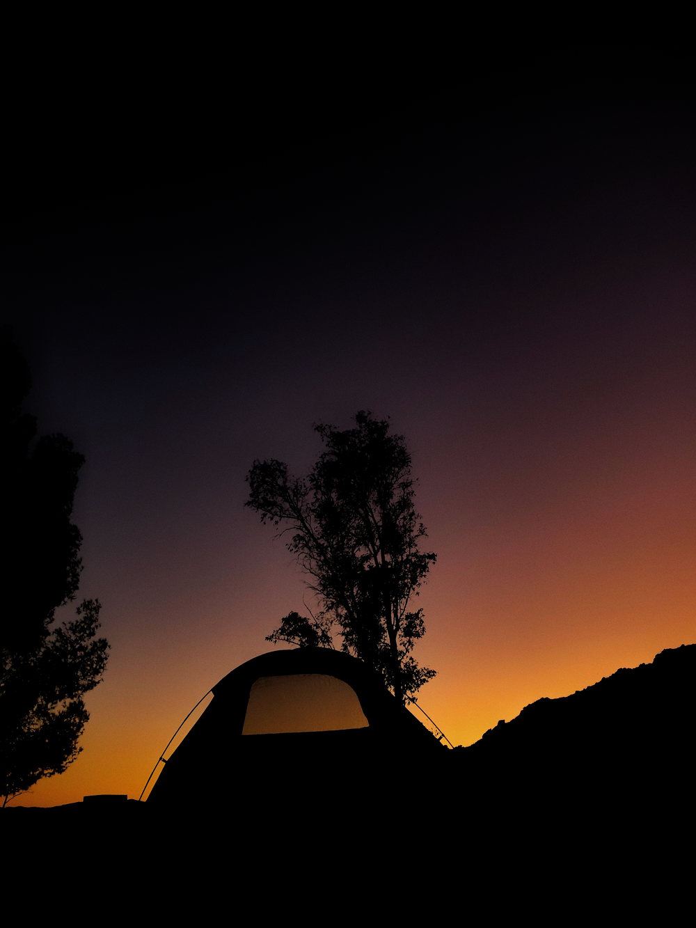 silhouette of tent under tree during golden hour
