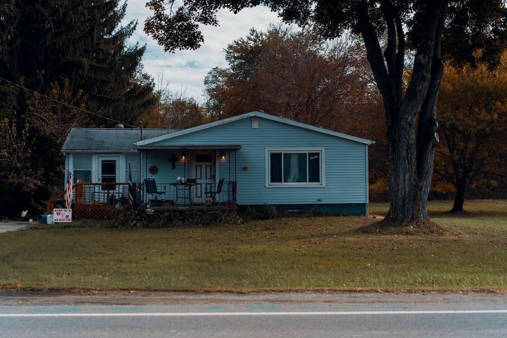 blue house beside tree