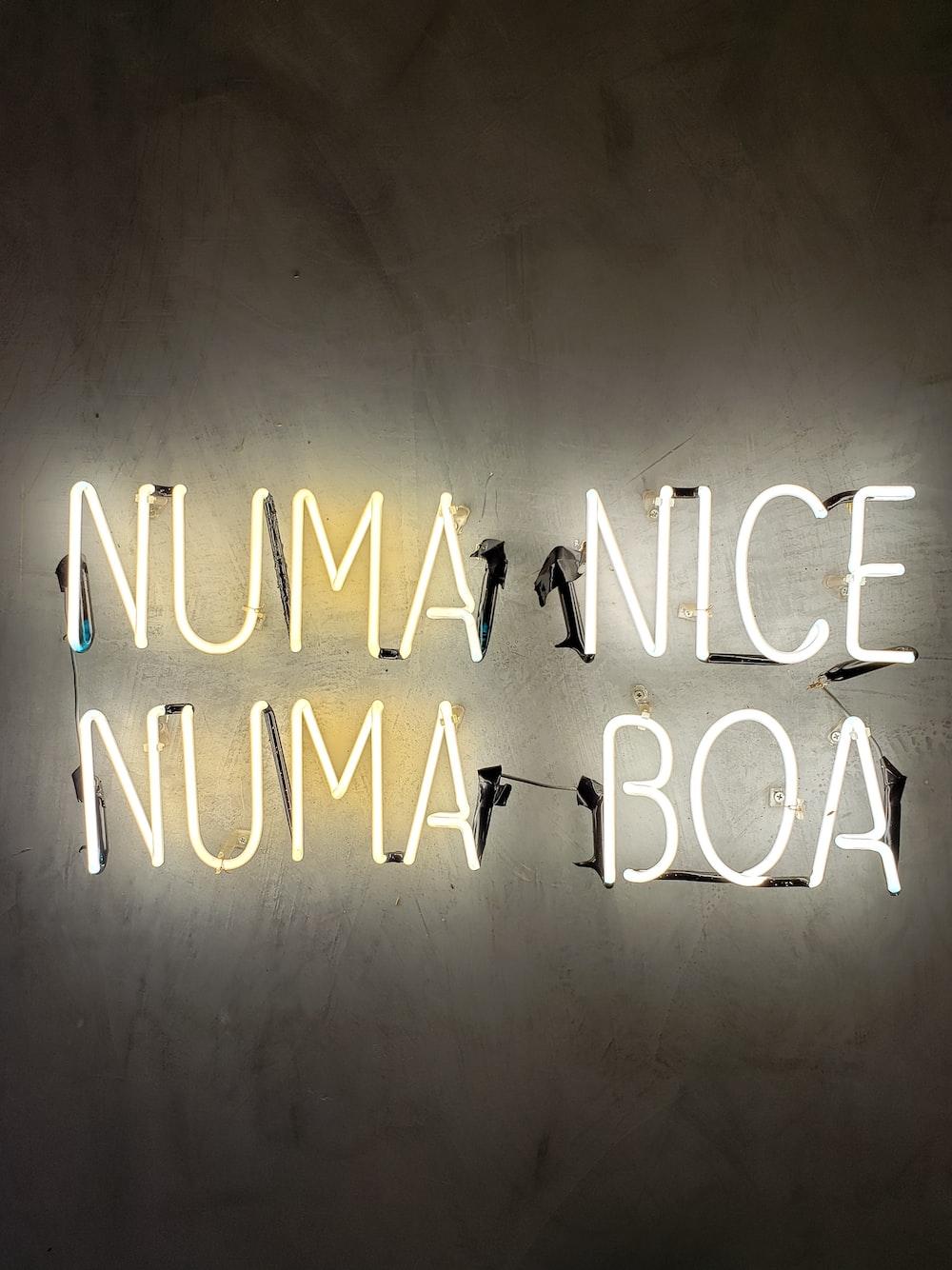 Numa Nice Numa Boa neon lights