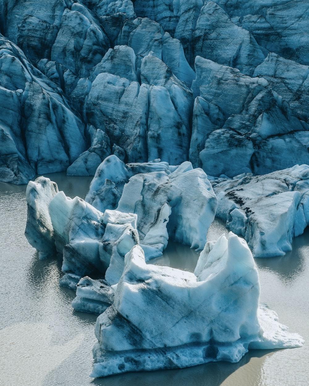 gray and white icebergs