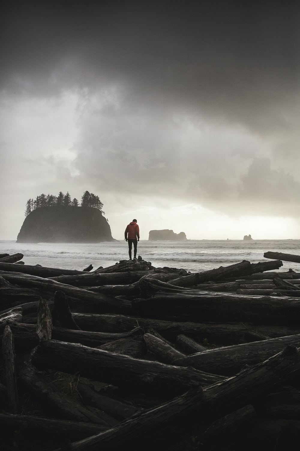 photo of person wearing orange sweater standing on logs