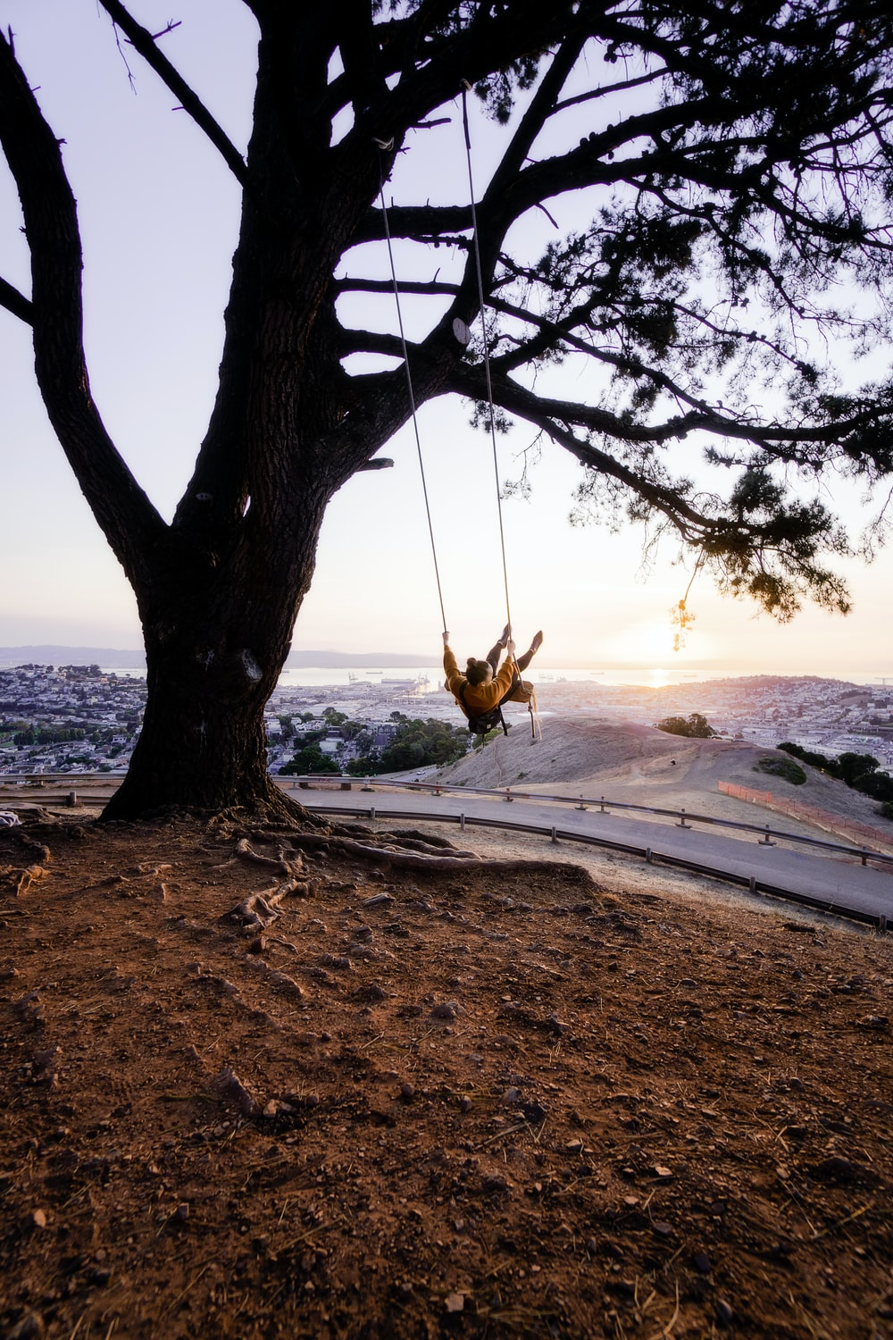person sitting on swing