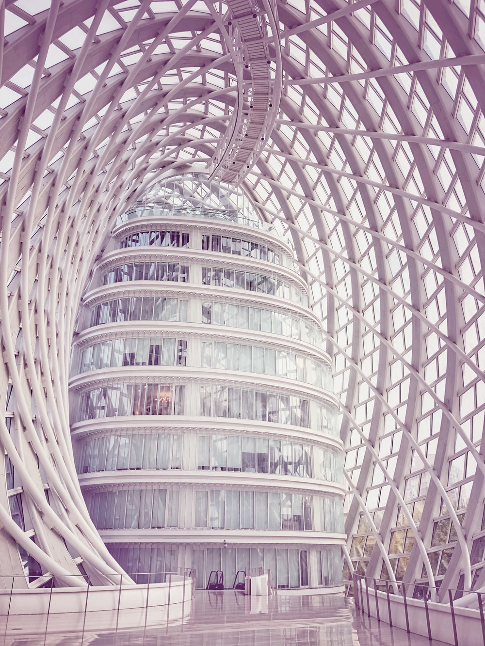 interior view of glass building inside metal frame dome