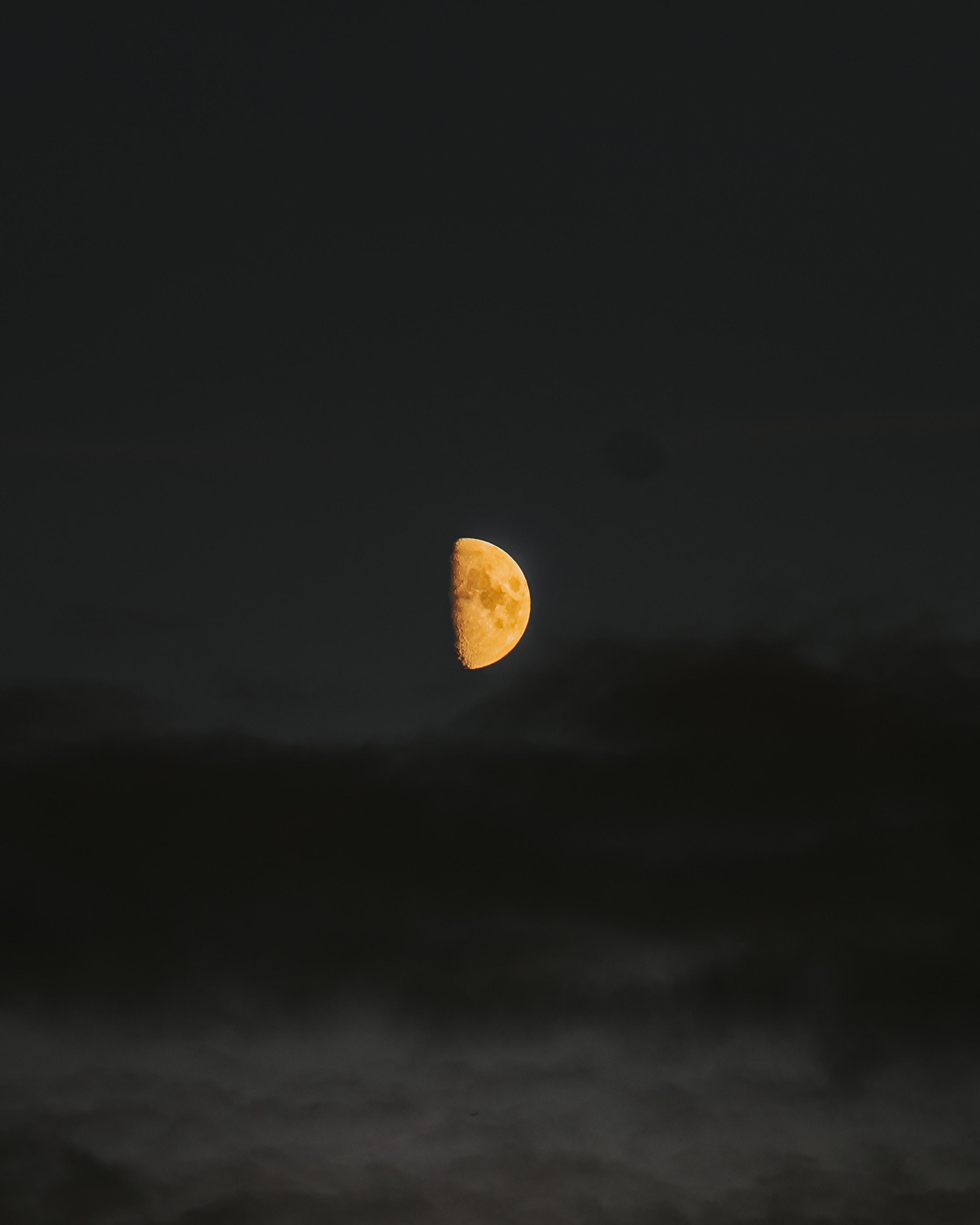 Moon stare.