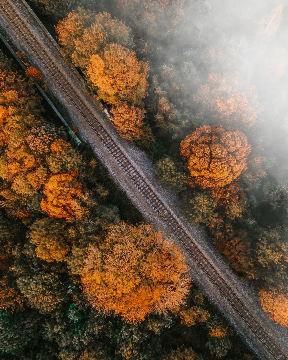 aerial photography of railroad