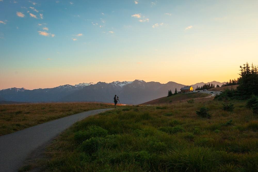 road between green fields during golden hour